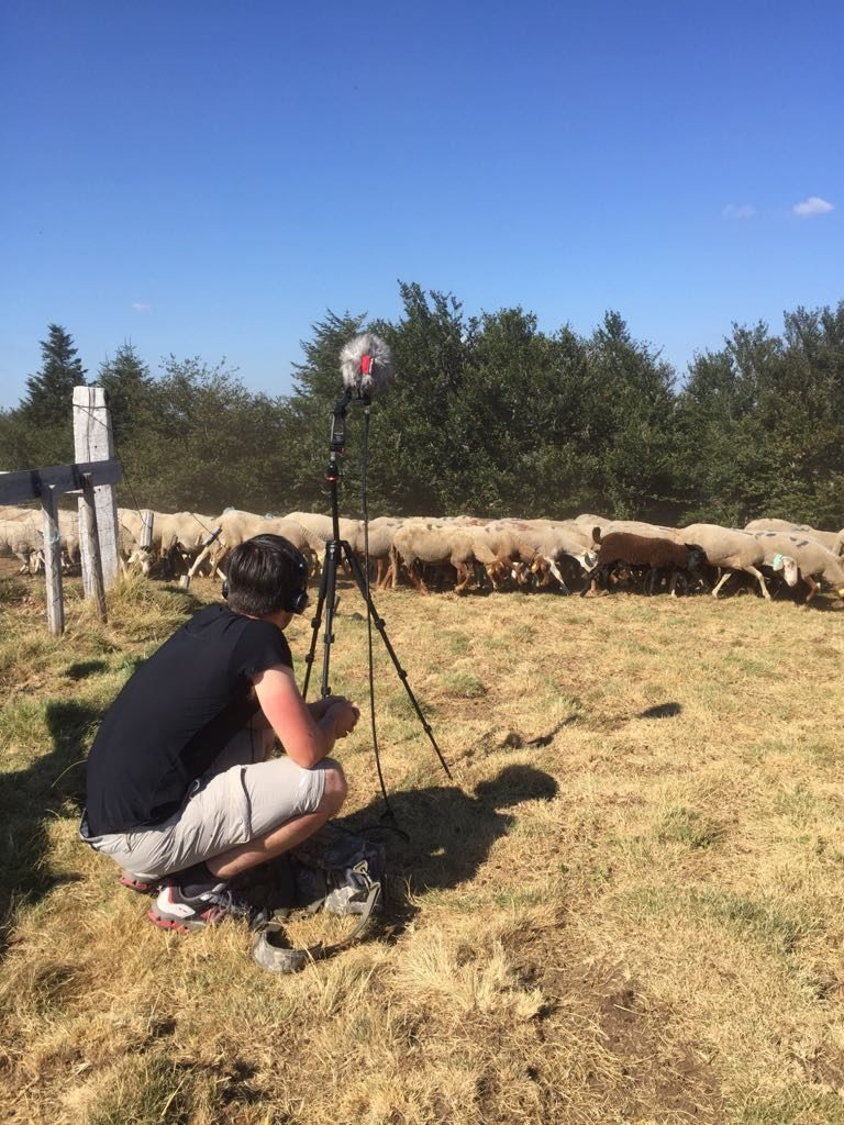 IMMERSIVE FIELD RECORDING – Capturing immersive soundscapes